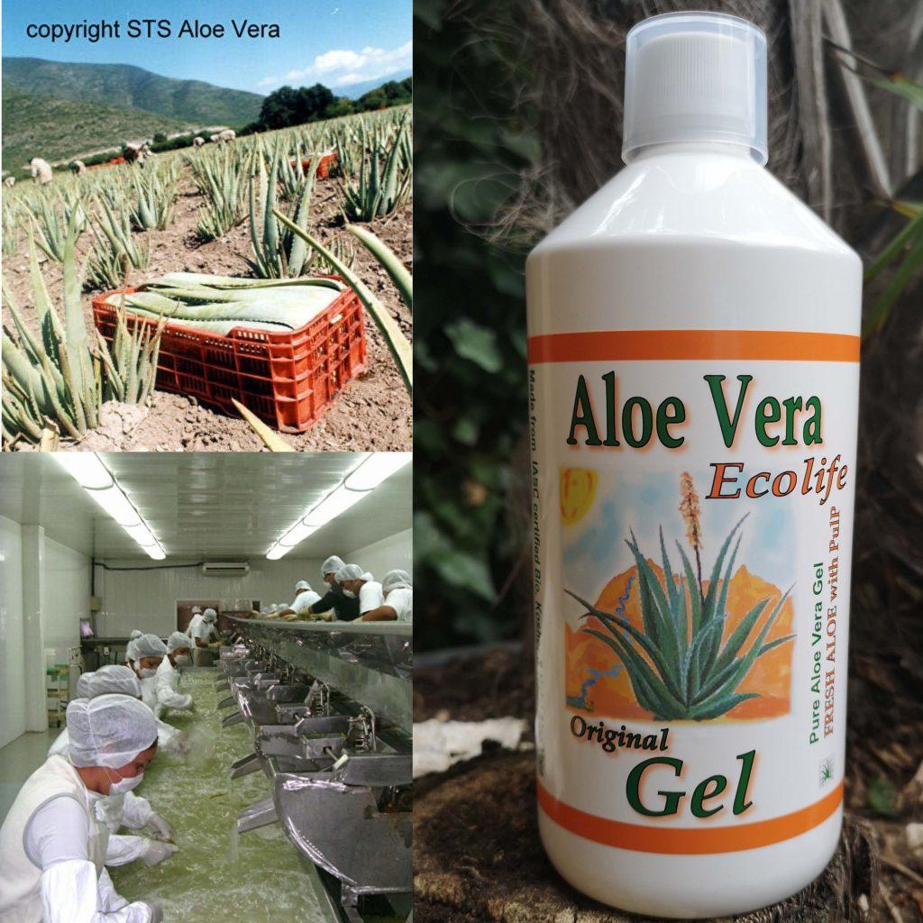 Aloë vera Gel - Ecolife